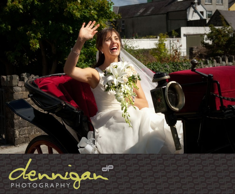 Horse and Carriage Kerry
